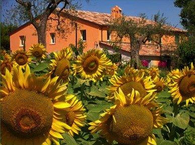 Agriturismi per eventi e ricevimenti Roma