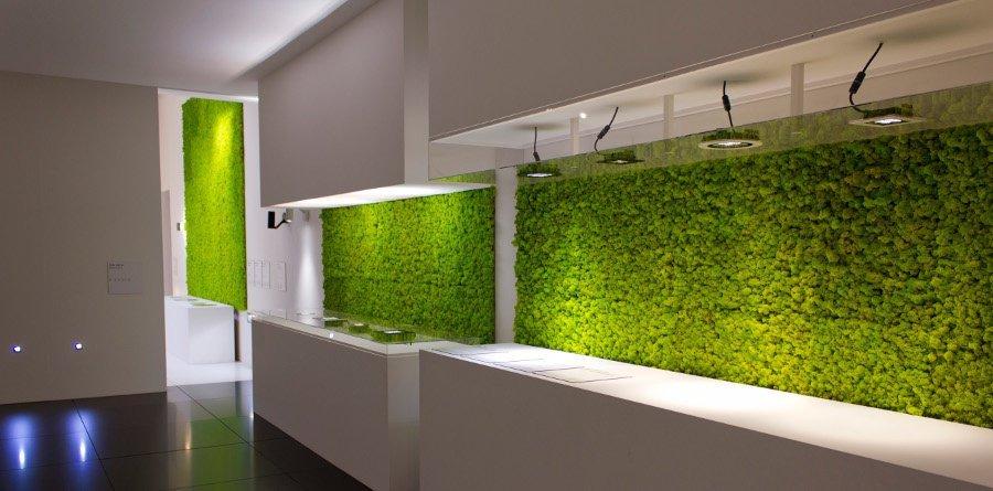 Moss Wall Roma