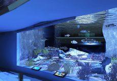 acquario di roma 4